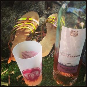 rose-domaine-escaravatiers
